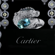 Cartier is 'punching above weight class'