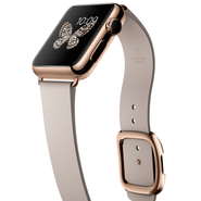 Apple's Apple Watch Edition