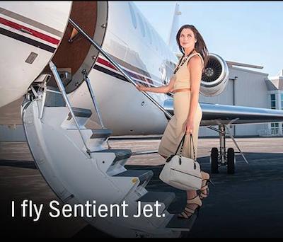 Sentient Jet promotional image